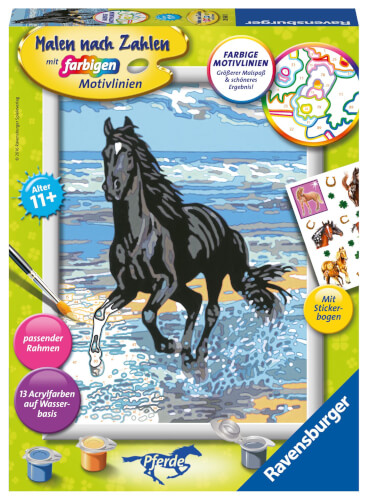 Ravensburger 285655 Malen Nach Zahlen Pferd Am Strand